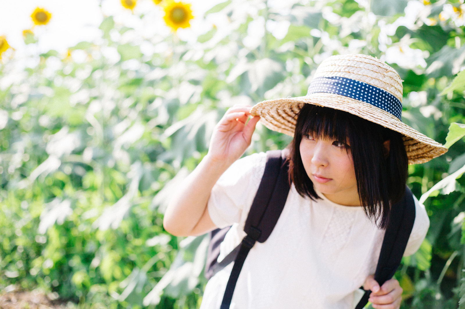 TSU_otakara_TP_V.jpg